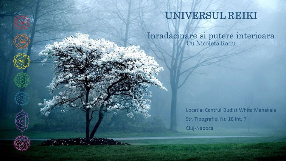 Universul Reiki: Inradacinare si putere interioara