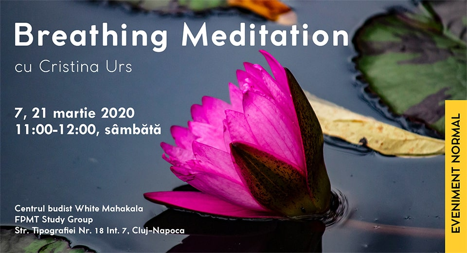 Breathing Meditation cu Cristina