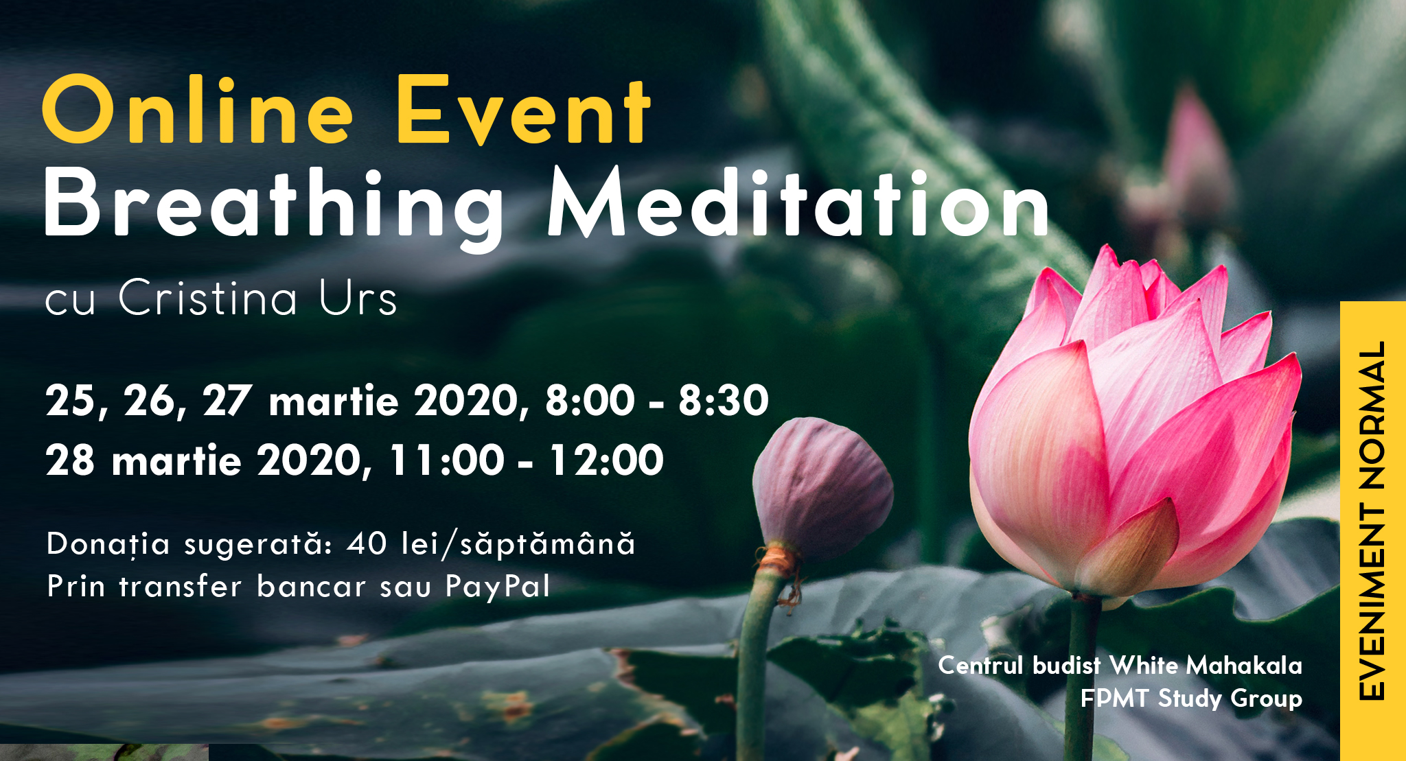Online Event Breathing Meditation cu Cristina
