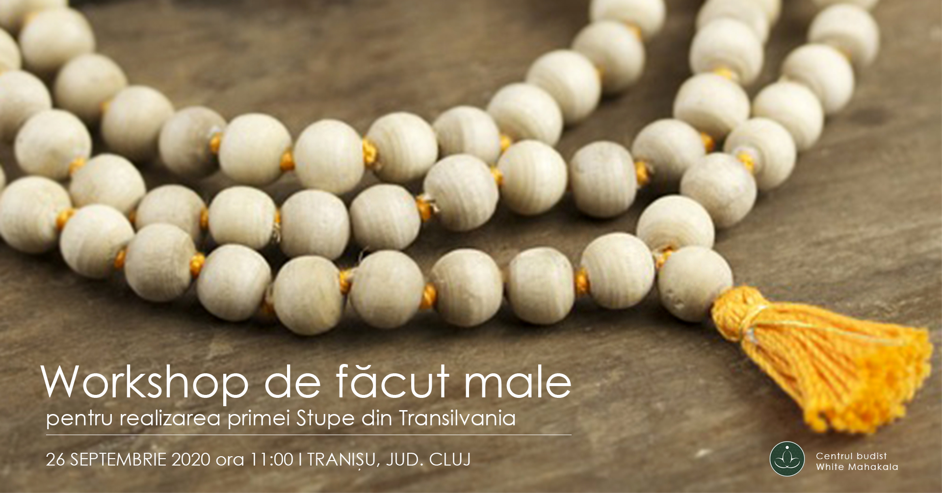Workshop de facut Male