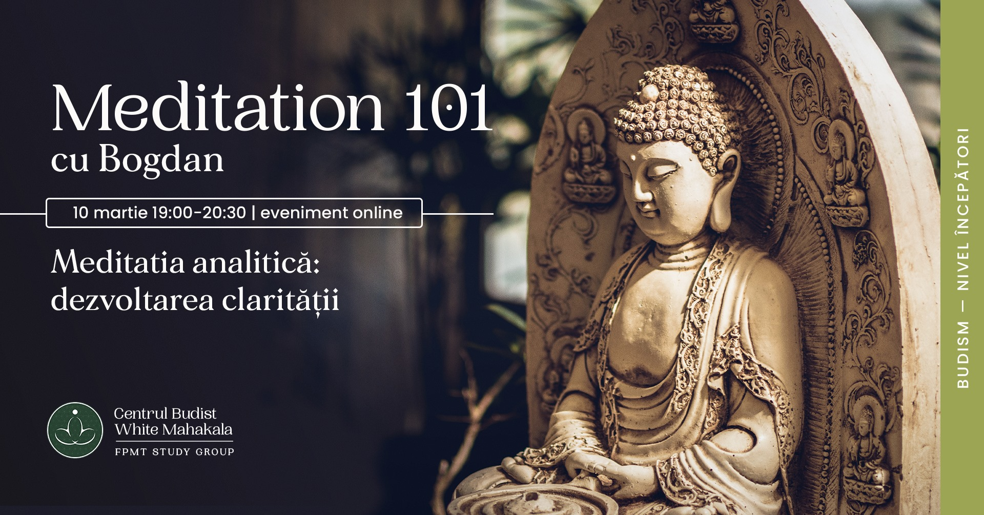MEDITATION 101- Meditatia analitica