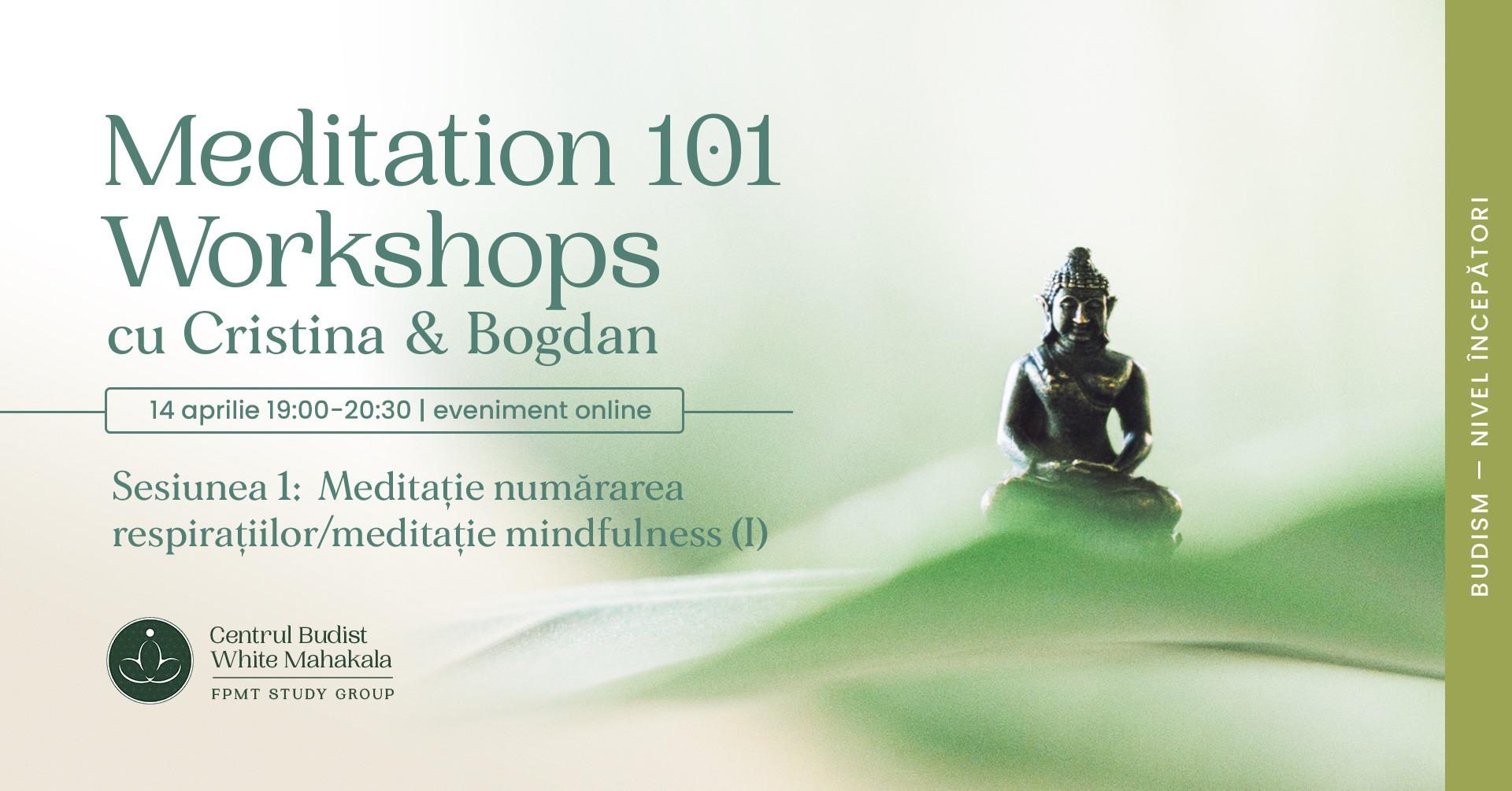 MEDITATION 101- Workshops