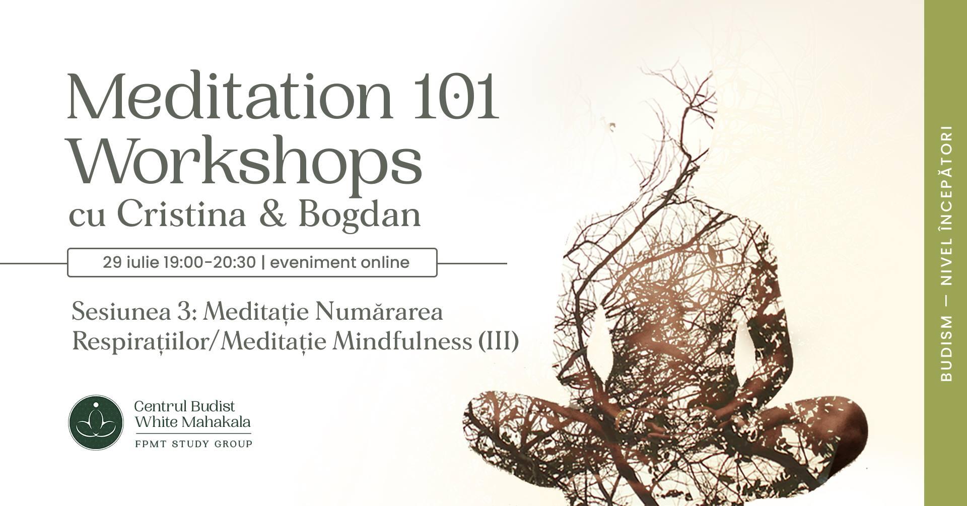 MEDITATION 101- Workshops Sesiunea 1: Meditatie Numararea Respiratiilor/Meditatie Mindfulness (III)