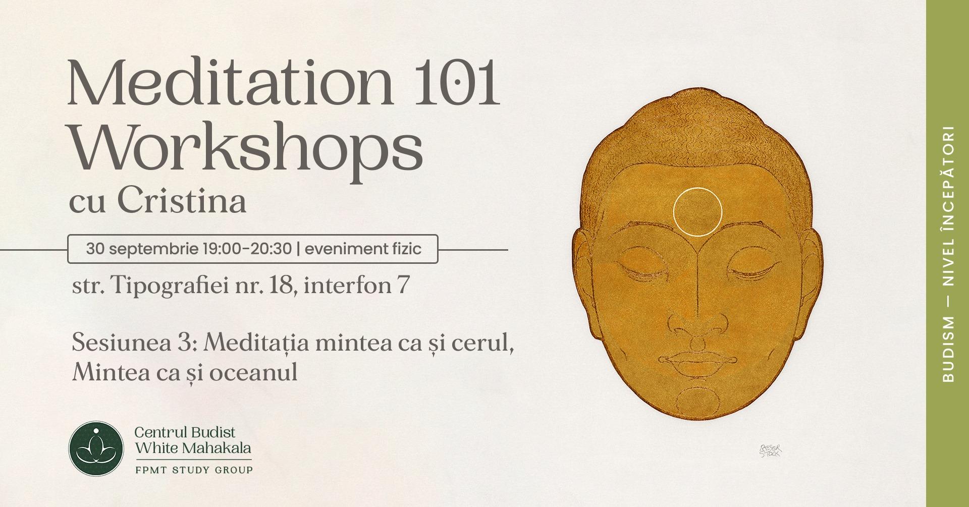 MEDITATION 101- Workshops. Sesiunea 3: Meditatie Mintea ca si cerul/Mintea ca si oceanul